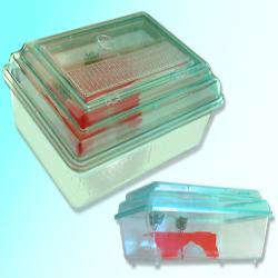 Catalogo prodotti gisaro srl for Tartarughiera in plastica grande